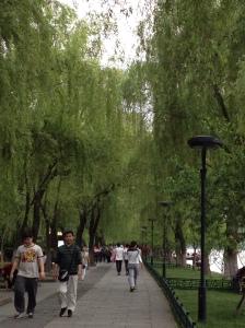 Hangzhou6