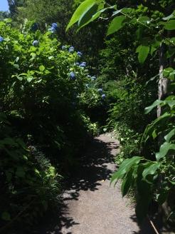 "...off the ""tourist"" path"